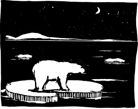 Polar bear in Arctic on ice flow.
