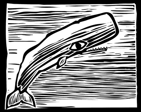 Woodcut vintage style image of a Sperm whale.