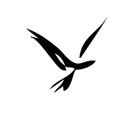 drift: Simple bird in flight design in simple strokes. Illustration