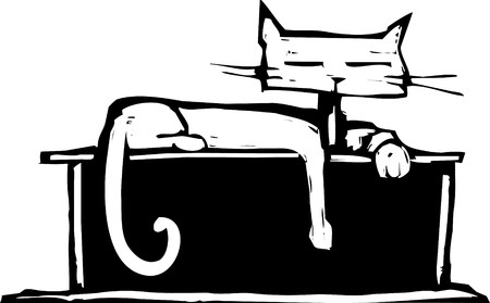 Cat with square head laying on a shelf.
