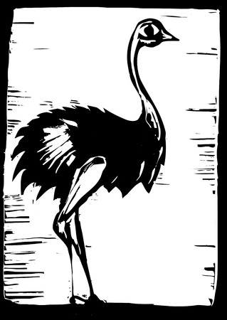 African ostrich in woodcut style Фото со стока - 7860748