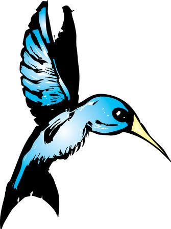 Woodcut of a blue hummingbird in flight. Illustration