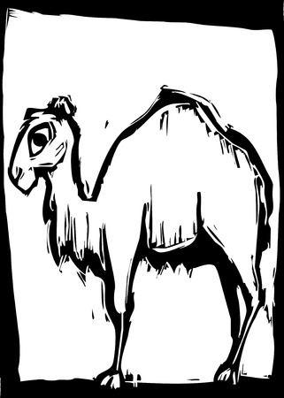 humped: simple woodcut image of a single humped camel. Illustration