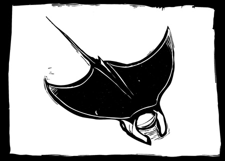 Manta ray swims in the ocean in a woodcut style image. Vector