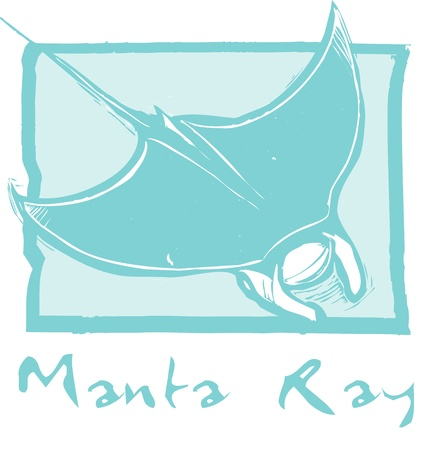 manta: Manta ray swims in the ocean in a woodcut style image.