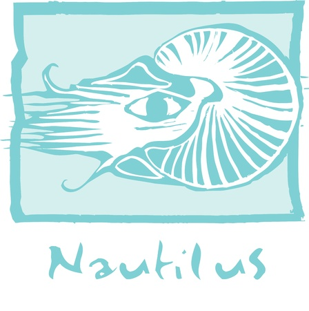 retro woodcut image of the many chambered nautilus.