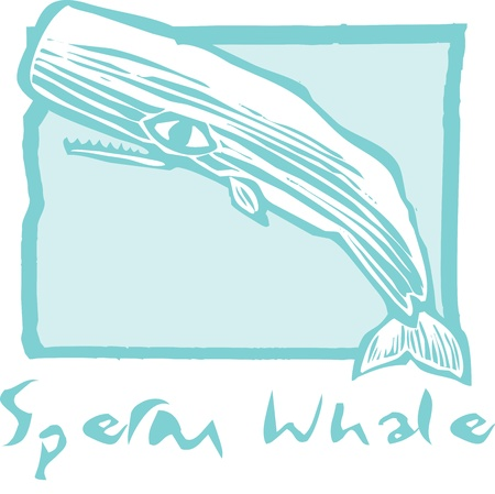Sperm Whale in Woodcut vintage style image of a Sperm whale. Stock Vector - 8825564