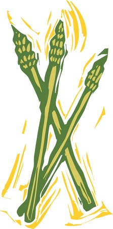 Asparagus spears in a woodcut style image of produce.