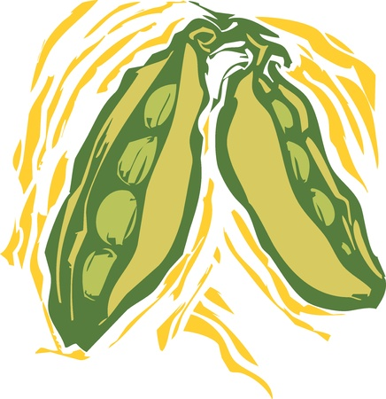 peas in a pod in a woodcut style image of produce.