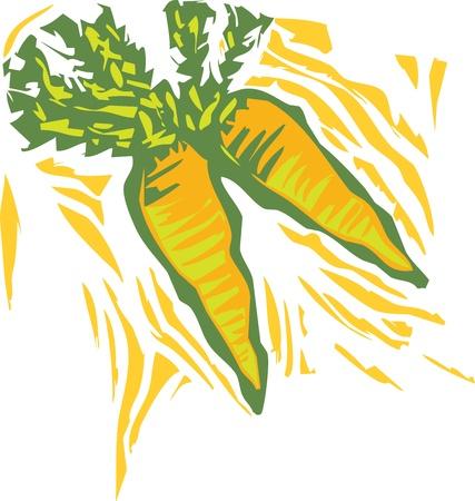 Carrots in a woodcut style image of produce. Illusztráció
