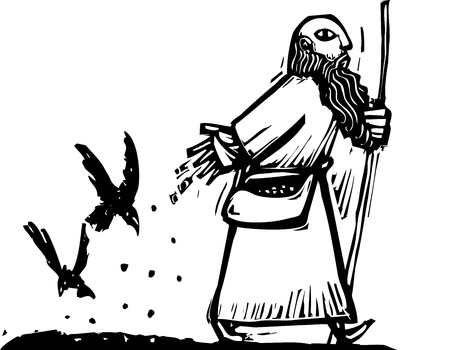 Man spreading seeds as he walks has them eaten by crows. Illustration