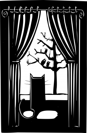pounce: Cat looking out a window with at a flock of birds