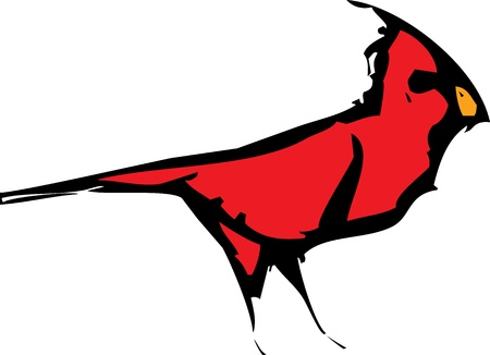 Woodcut style image of a red cardinal bird  Stock Vector - 15354753