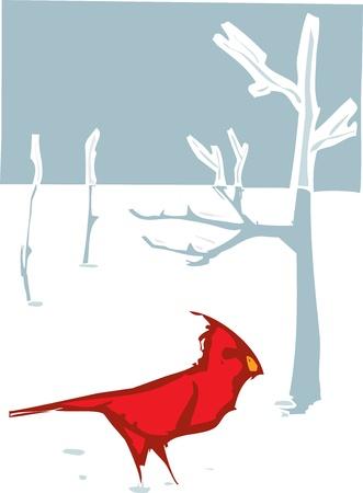 Le style de gravure sur bois image d'oiseau Cardinal dans la neige d'hiver Banque d'images - 15354757