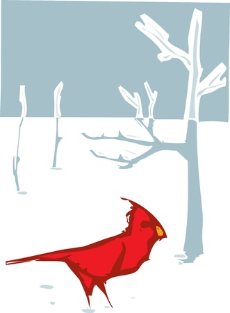 Woodcut style image Cardinal bird in the winter snow  Vector