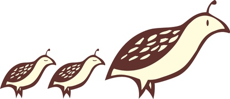 follower: Partridge bird leads a couple of baby chicks  Illustration