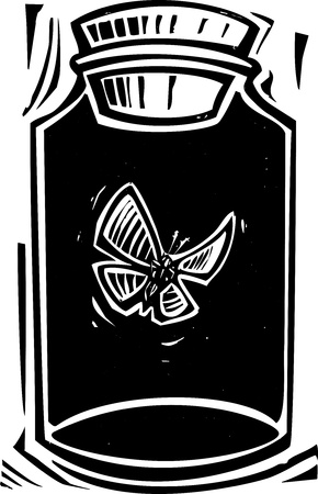 Woodcut style expressionist image of a butterfly in a killing jar