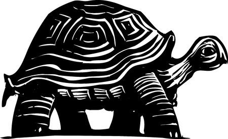 steady: Woodcut style turtle or tortoise wandering around.