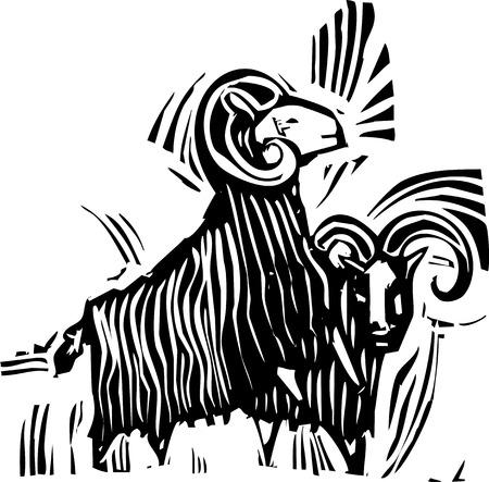 Woodcut style image of two ram goats. Illustration