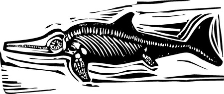 depictions: Simple rough woodcut style depictions of a Ichthyosaur Dinosaur fossil