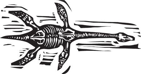 Plesiosaurus 수생 공룡의 목 판화 스타일 이미지 일러스트