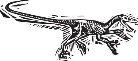 실행중인 Velociraptor 공룡 화석의 목판화 스타일 이미지 일러스트