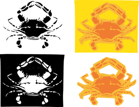 baltimore: Woodcut style image of Maryland Atlantic blue crabs in different versions.
