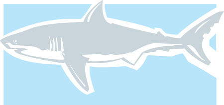 Clean graphic image of a great white shark