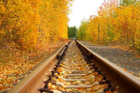 wood railways: railway
