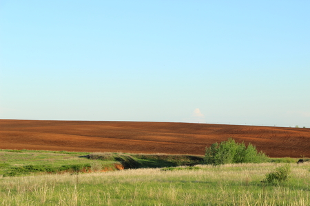 plough land: black and green field under blue sky Stock Photo