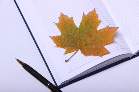 black pen lying on a blue notebook. yellow maple leaf Stock Photo