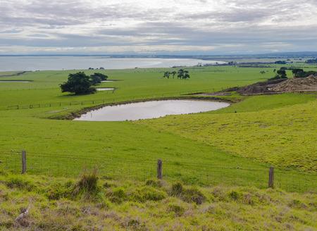 Country landscape in Australia. Nature around Melbourne. Nature around Melbourne. Lake Village, Australia Stock fotó