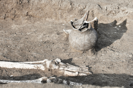 Archaeological excavations. Bones of skeleton legs / foot (found in the tomb) Real digger process. Outdoors, copy space, close up. Stok Fotoğraf