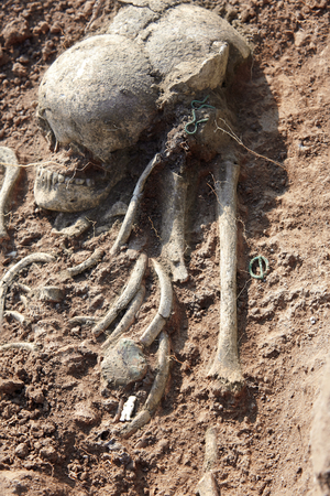 Archaeological excavations. Human remains (skull) found in the tomb. Real science digger process. Outdoors, copy space. Imagens - 120588179