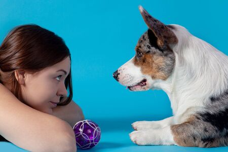 Cute Welsh Corgi Cardigan dog and young attractive woman lying on blue background in studio, looking at each other, face to face. Rare Merle animal color, pretty expressions, love and understanding of pet and owner. Copy space for any text.