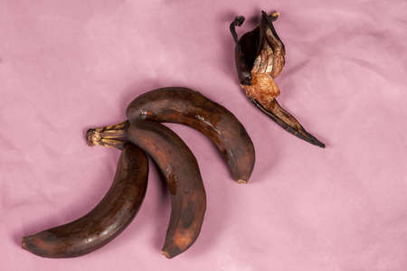 A bunch of tainted bananas and one, half-peeled, rotten, lying down on a purple background. Stale fruit concept. Indoors, copy space.