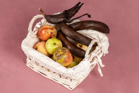 Some overripe fruits in white wicker basket with dirty napkin, tainted bananas, half-peeled and rotten, apples with decay spots on purple background. Stale fruit concept. Indoors, copy space.