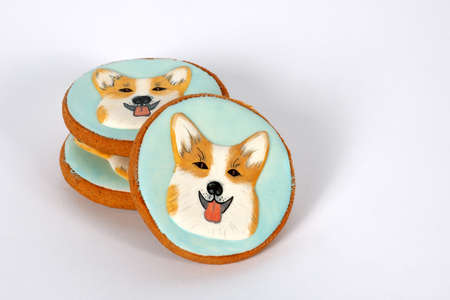 Traditional handmade painted gingerbreads with welsh corgi dog portraits. Beautiful cookies decorated by colorful frosting. Idea for hobby, birthday gift or party. White background, copy space.