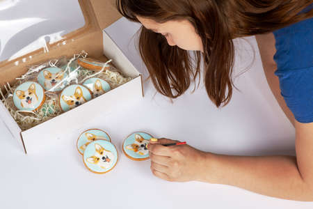 Young woman paints with brush handmade gingerbreads with welsh corgi dog portraits, cardboard box is near. Beautiful cookies decorated by colorful frosting. Hobby, birthday gift. White background.