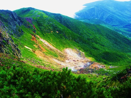 the wild nature of Sakhalin and the Kuril Islands