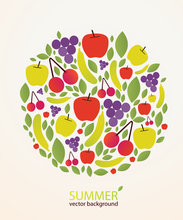 ligh: Different vector fruits on ligh summer background.