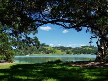 regional: Tree-enmarcado vista del agua en Wenderholm Regional Park, cerca de Auckland