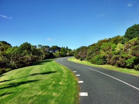 regional: Carretera de curvas en Shakespear Regional Park, cerca de Auckland