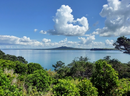 View over bush vegetation on Motuihe Island near Auckland onto the sea with Rangitoto Island and high white clouds in the background