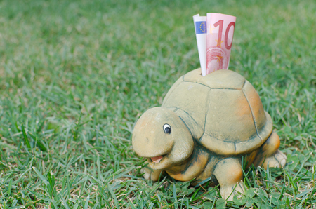 Happy Turtle Piggy Bank with Ten Euro Banknote in the Green Grass photo