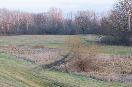 muddy tracks: Muddy Car Tracks in Floodplain in Winter Landscape Stock Photo