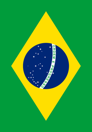 large size: Official Flag of Brazil Flat Large Size Vertical
