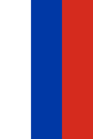 large size: Official Flag of Russia Flat Large Size Vertical Stock Photo