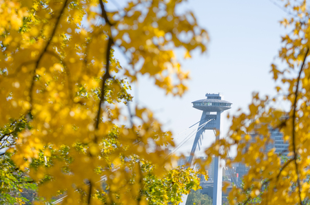 uprising: Bridge of the Slovak National Uprising in Bratislava Surrounded by Yellow Autumn Leaves