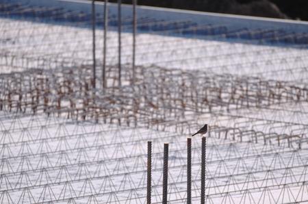 strenghten: Concrete Reinforcement on a Construction Area with Little Bird